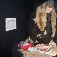 Historické muzeum, porod neandrtálce