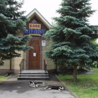 N.Novgorod - hospoda