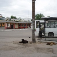Vorsma - autobusák