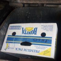 Papírová krabice s nápisem SKLO v popelnici na směsný odpad