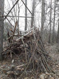 Kbely - mišpule i domeček ze dřeva...