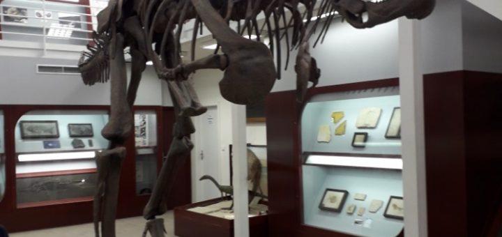 Replika kostry dinosaura