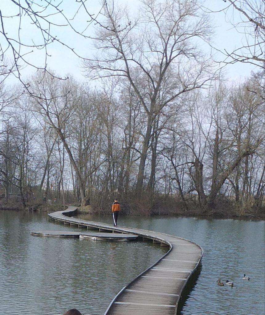 Lávka přes rybník ve Vestci