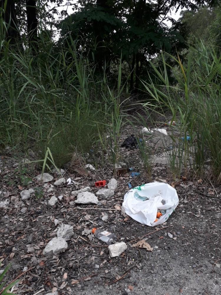 Cesta lesem - Międzyzdroje - odpadky