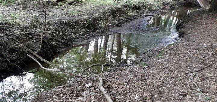 Kunický potok